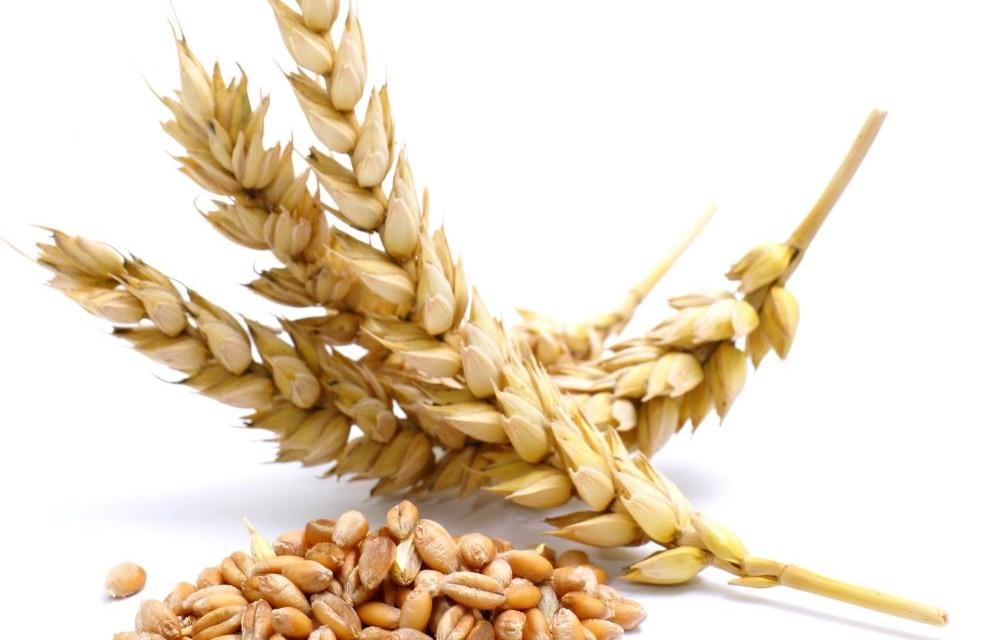 glutenintolerantie: 12 symptomen